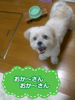 20130119-1.png